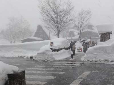 帰り際にやってきた吹雪