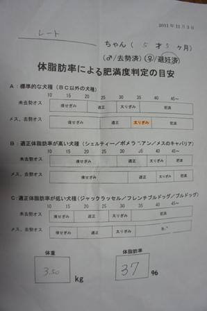 DSC01855g.JPG