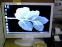 a18db6fe.jpg