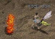 2008-08-06_00-29-19_1.jpg