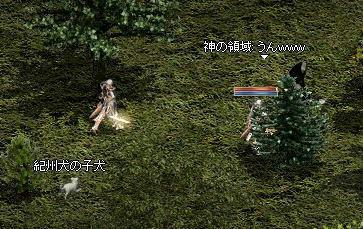 2008-09-06_13-20-40_1.jpg