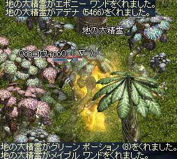 2008-12-08_14-09-28_0.jpg