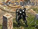 2009-02-13_23-54-23_0.jpg