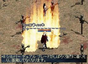 2009-05-09_17-49-11_0.jpg