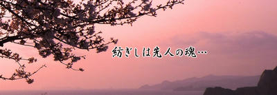 p20_01.jpg