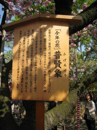 zouheikyoku_hugennzou_210408.JPG