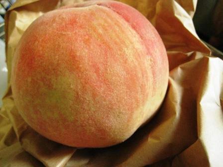 peach_020908.JPG