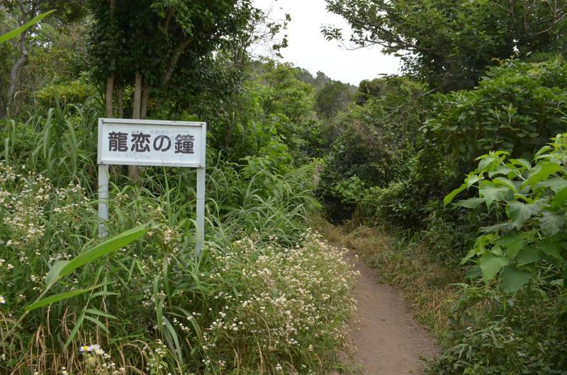 はじめて日本の海に入ってきた at 江ノ島