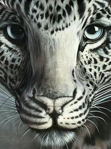 Leopard-Optical-Illusion1.jpg
