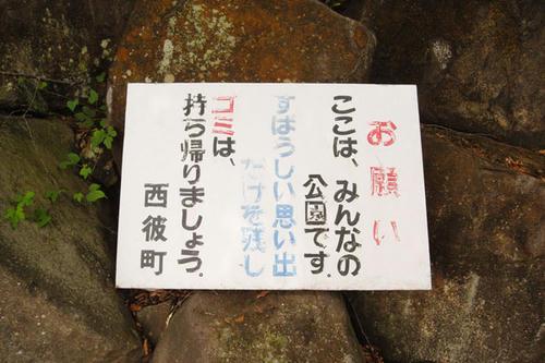 11.6.8seihicyo6.JPG