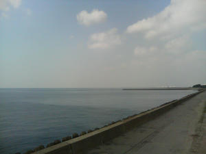 千葉の海(内房)