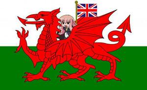 新イギリス国旗??ゼロの使い魔 ルイズバージョン