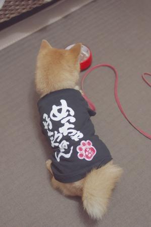 http://blog.cnobi.jp/v1/blog/user/5372066eaa7f42ee290a4176dda1b356/1393761550