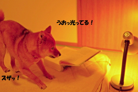 http://blog.cnobi.jp/v1/blog/user/5372066eaa7f42ee290a4176dda1b356/1394447348