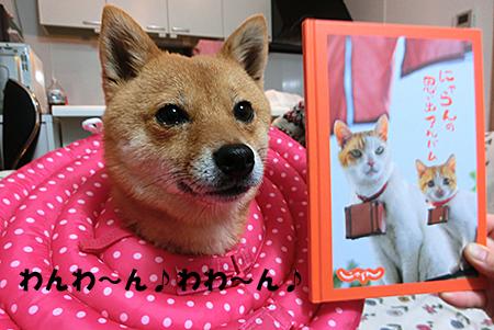 http://file.udon.sakeblog.net/CIMG0725.jpg