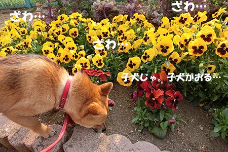 http://blog.cnobi.jp/v1/blog/user/5372066eaa7f42ee290a4176dda1b356/1397733680