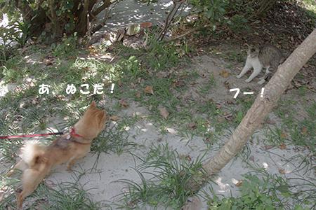 http://blog.cnobi.jp/v1/blog/user/5372066eaa7f42ee290a4176dda1b356/1398306182