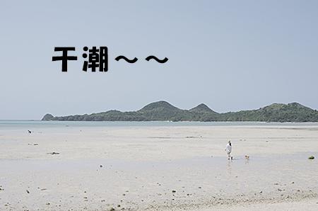 http://blog.cnobi.jp/v1/blog/user/5372066eaa7f42ee290a4176dda1b356/1398313239