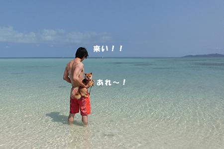 http://blog.cnobi.jp/v1/blog/user/5372066eaa7f42ee290a4176dda1b356/1398586917