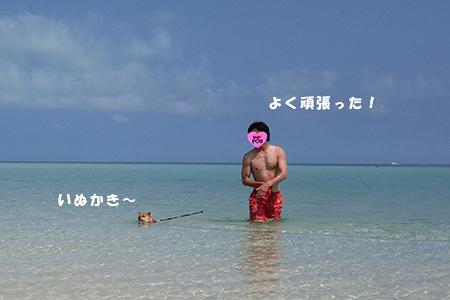 http://blog.cnobi.jp/v1/blog/user/5372066eaa7f42ee290a4176dda1b356/1398586918