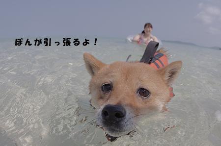 http://blog.cnobi.jp/v1/blog/user/5372066eaa7f42ee290a4176dda1b356/1398586923