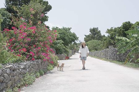 http://file.udon.sakeblog.net/IMGP2209.jpg