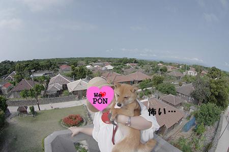 http://blog.cnobi.jp/v1/blog/user/5372066eaa7f42ee290a4176dda1b356/1398588471