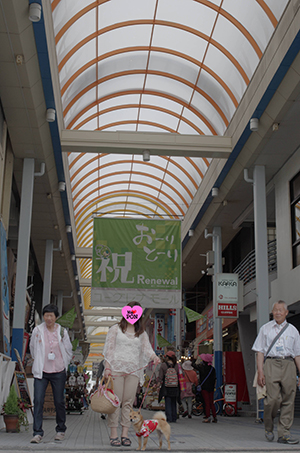 http://file.udon.sakeblog.net/IMGP2302.jpg