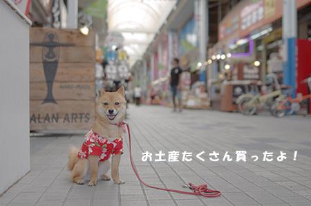 http://blog.cnobi.jp/v1/blog/user/5372066eaa7f42ee290a4176dda1b356/1398857801