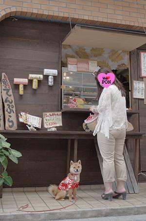 http://blog.cnobi.jp/v1/blog/user/5372066eaa7f42ee290a4176dda1b356/1398858003
