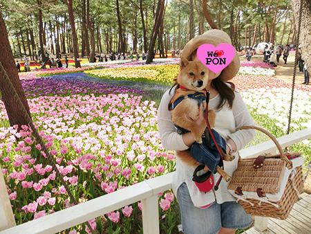 http://blog.cnobi.jp/v1/blog/user/5372066eaa7f42ee290a4176dda1b356/1399465350