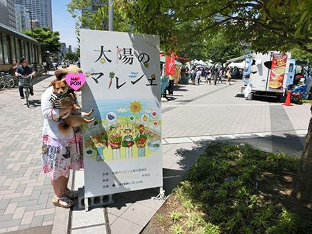 http://file.udon.sakeblog.net/CIMG1076.jpg
