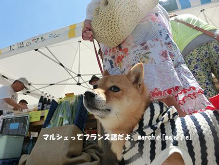 http://blog.cnobi.jp/v1/blog/user/5372066eaa7f42ee290a4176dda1b356/1399798413
