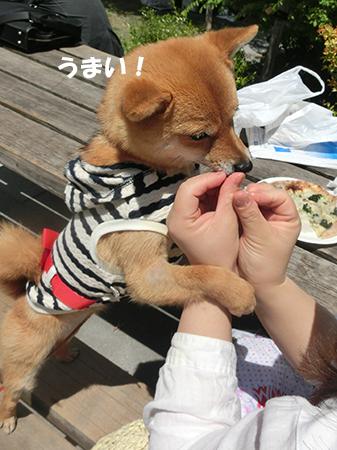 http://blog.cnobi.jp/v1/blog/user/5372066eaa7f42ee290a4176dda1b356/1399798427