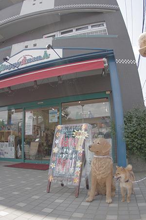 http://file.udon.sakeblog.net/IMGP3273.jpg