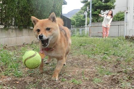http://file.udon.sakeblog.net/CIMG1144.jpg