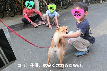 http://blog.cnobi.jp/v1/blog/user/5372066eaa7f42ee290a4176dda1b356/1400845984