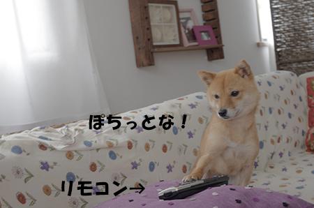 http://blog.cnobi.jp/v1/blog/user/5372066eaa7f42ee290a4176dda1b356/1402544334