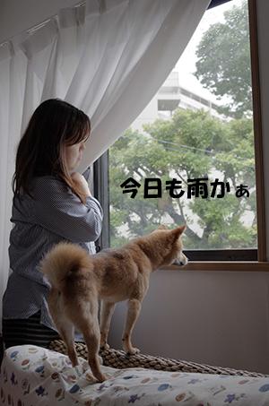 http://blog.cnobi.jp/v1/blog/user/5372066eaa7f42ee290a4176dda1b356/1402544336