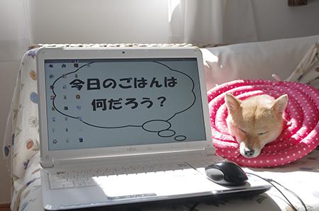 http://blog.cnobi.jp/v1/blog/user/5372066eaa7f42ee290a4176dda1b356/1402831220