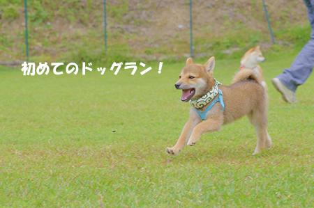 http://blog.cnobi.jp/v1/blog/user/5372066eaa7f42ee290a4176dda1b356/1403419997