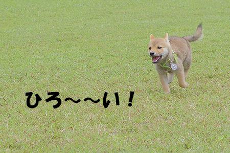 http://blog.cnobi.jp/v1/blog/user/5372066eaa7f42ee290a4176dda1b356/1403419999