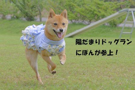 http://blog.cnobi.jp/v1/blog/user/5372066eaa7f42ee290a4176dda1b356/1403420030