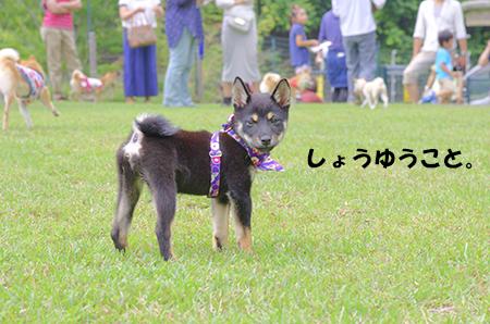 http://blog.cnobi.jp/v1/blog/user/5372066eaa7f42ee290a4176dda1b356/1403420036