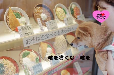 http://file.udon.sakeblog.net/IMGP4196.jpg