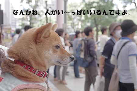http://blog.cnobi.jp/v1/blog/user/5372066eaa7f42ee290a4176dda1b356/1404116381