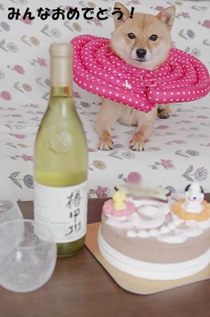 http://blog.cnobi.jp/v1/blog/user/5372066eaa7f42ee290a4176dda1b356/1404117921