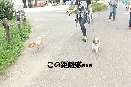 http://blog.cnobi.jp/v1/blog/user/5372066eaa7f42ee290a4176dda1b356/1404390531