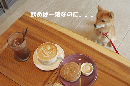 http://blog.cnobi.jp/v1/blog/user/5372066eaa7f42ee290a4176dda1b356/1405486085