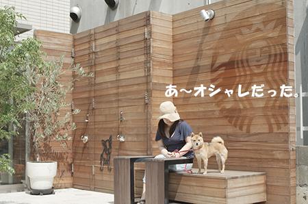 http://blog.cnobi.jp/v1/blog/user/5372066eaa7f42ee290a4176dda1b356/1405486101